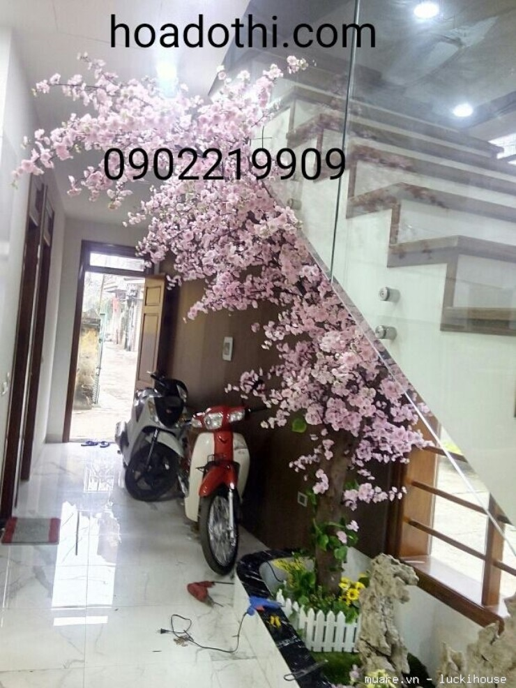 Chuyên sửa chữa, thay thế, vệ sinh các loại cây hoa giả, cỏ giả,lá giả liên hệ 0902219909