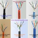 Cáp mạng Cat.6 - Hosiwell Cable