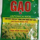 in bao bì nilon đựng gạo