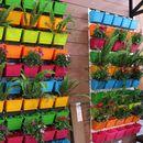 Trang trí nhà đẹp bằng vườn hoa trên tường