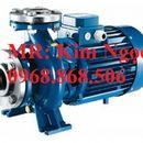 0968868506 máy bơm trục ngang pentax 4kw, 5.5kw, 7.5kw nhập khẩu