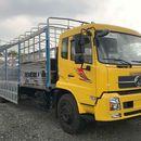 Xe tải Dongfeng nhập khẩu