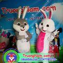 Mascot thỏ, mascot trung thu,trang phục biểu diễn