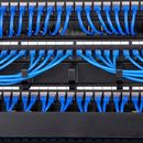 Patch cord Commscope