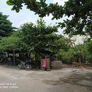 Bán đất thô cư hẻm xe hơi – Giá đầu tư Đ.Võ Thị Liễu, An Phú Đông, Q12