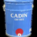 Đại lý chuyên cung cấp sơn dầu cadin chuyên dùng cho mọi công trình giá rẻ nhất sài gòn