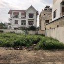 Cần bán 258m đất biệt thự khu 31ha Trâu Quỳ, Gia Lâm: