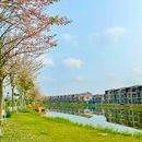 Cần bán biệt thự đơn lập view sông đẳng cấp nhất Hải phòng