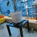 Ghế sắt đôn kê chân chậu cây cảnh, sắt hộp chắc chắn, sơn tĩnh điện bền màu