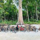 Trekiing vườn quốc gia Phú Quốc