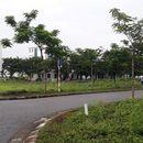 Bán đất nền 2 mặt tiền Yên Phong, giá 29 triệu/m2