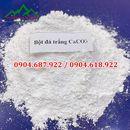 Bột đá CaCO3 Siêu trắng