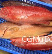 Cá mú đỏ có thể chế biến thành các món ngon
