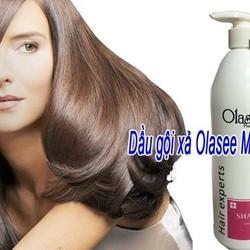 Dầu gội xả Phyto.s, maxtop, dưỡng tóc, sáp vuốt tóc nam, kem ủ tóc, tinh dầu, hồi sinh tóc, gôm xịt