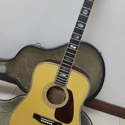 bán đàn guitar morris TF 100